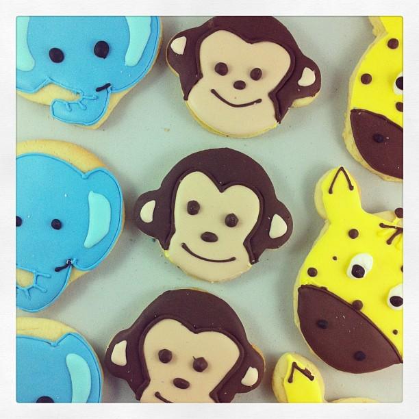 Jungle Cookies!